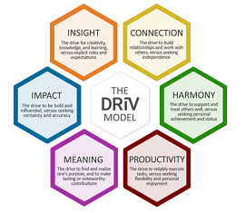 The DRiV Personality Assessment Tool