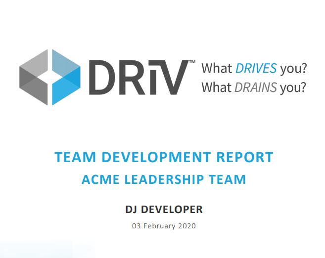 DRiV Team Development Sample Report